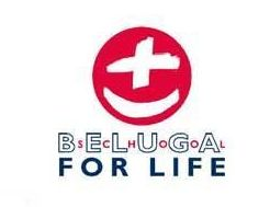 Logo Beluga School for Life